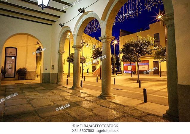 Town Hall. Pineda de Mar. Barcelona. Catalunya. Spain