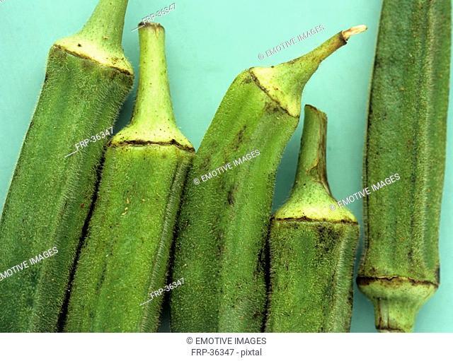 Lady's fingers Hibiscus esculentus