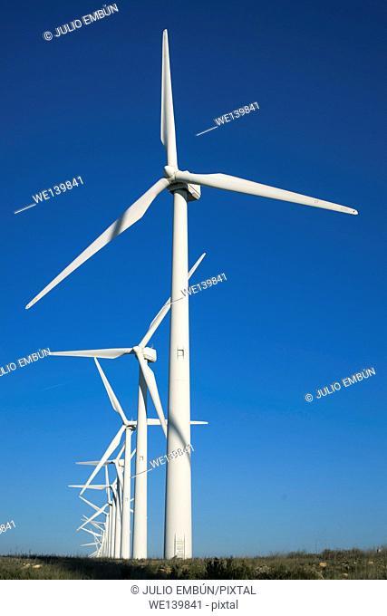 Field of wind generators
