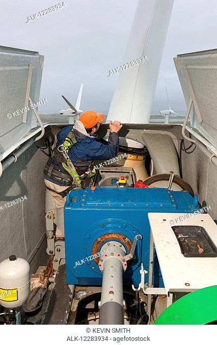 Alaska native technican checking for blade damage atop a wind turbine, St. Paul Island, Southwestern Alaska, USA, Summer