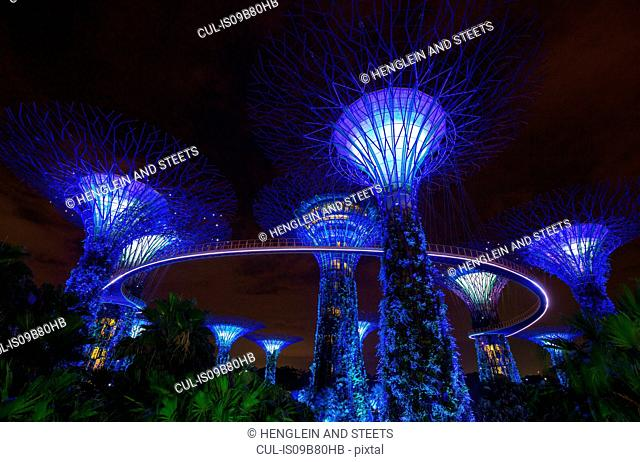 Blue Supertree Grove at night, Singapore, South East Asia