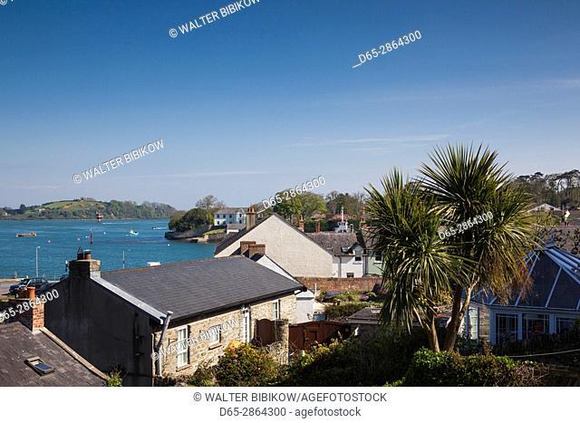 UK, Northern Ireland, County Down, Strangford, houses