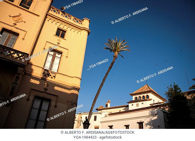 Town hall (left) and palm tree. Sitges, Barcelona province, Spain