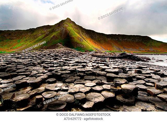 Giant's Causeway. North Ireland. Ireland