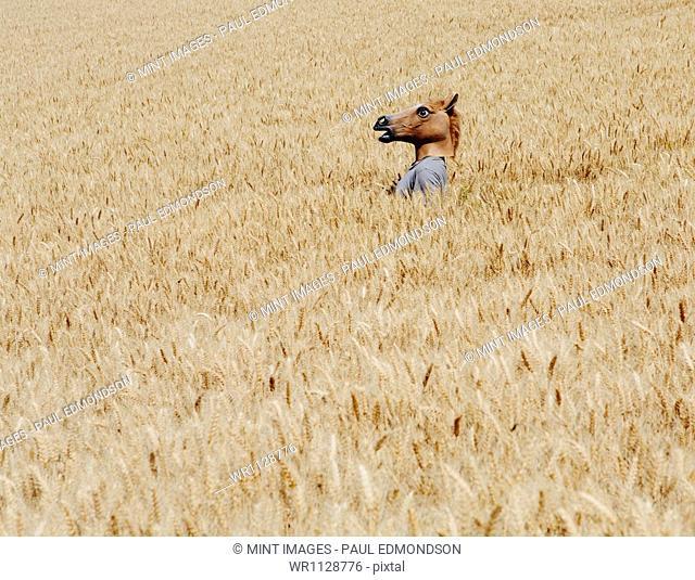 A man wearing a horse mask standing in a wheat field, near Pullman