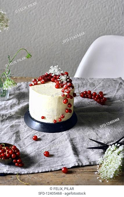 A redcurrant and elderflower cake