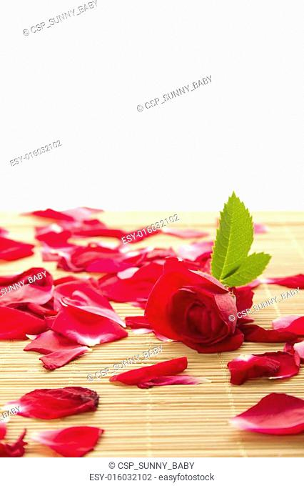 Background of roses and petals