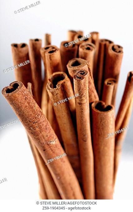 clip image - cinnamon sticks - Cinnamomum cassia