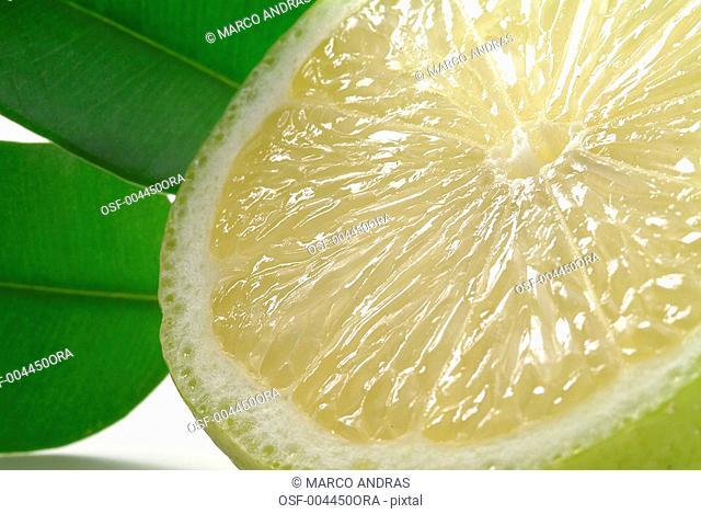 sliced citric fruit lemon full of C vitamin