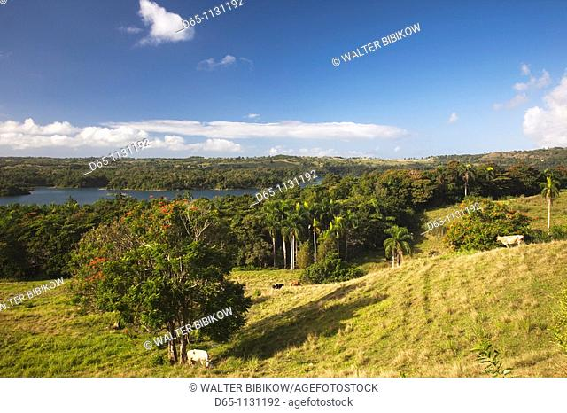 Puerto Rico, North Coast, San Sebastian, landscape by Lago de Guajataca lake