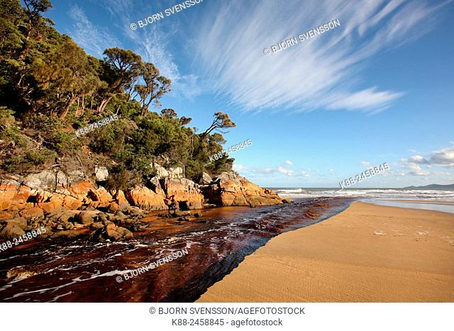 River with tannin colored water at Five Mile Beach. Wilsons Promontory National Park. Victoria, Australia