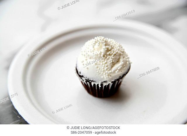 Chocolate Mini Cupcake, White Vanilla Icing, White Sugar Bead Sprinkles, on a White Plate