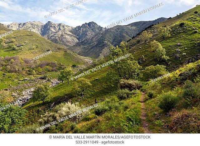 Chilla gorge in the Sierra de Gredos. Avila. Castilla Leon. Spain. Europe