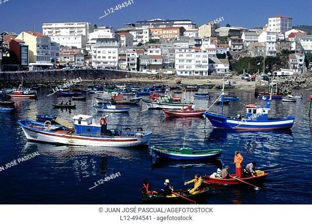 Fishing port, Fisterra. La Coruña province, Galicia, Spain