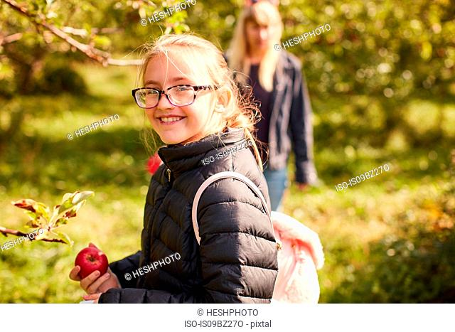 Girl picking apples from tree