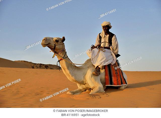 Man on camel, Meroë, Nubia, River Nile state, Sudan