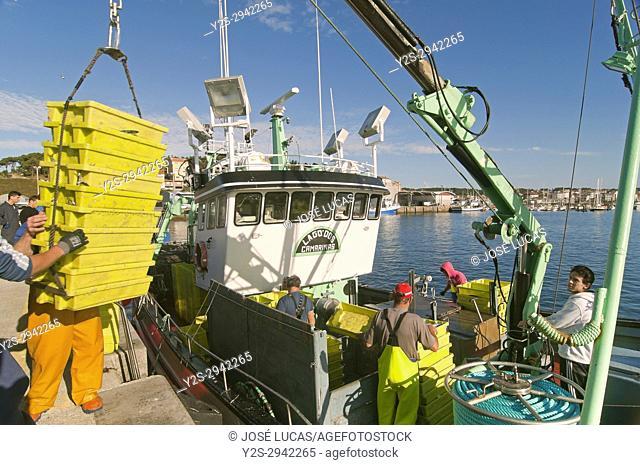 Fishing boat downloading boxes of fish, Camarinas, La Coruna province, Region of Galicia, Spain, Europe