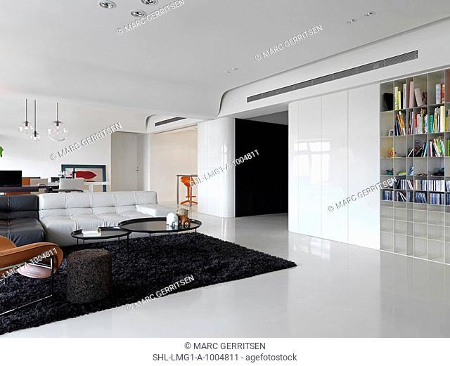 Large modern living room with black shag rug