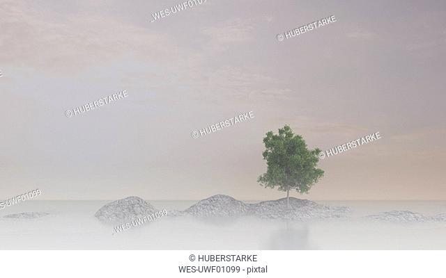 Single maple tree on rock in water, 3D Rendering