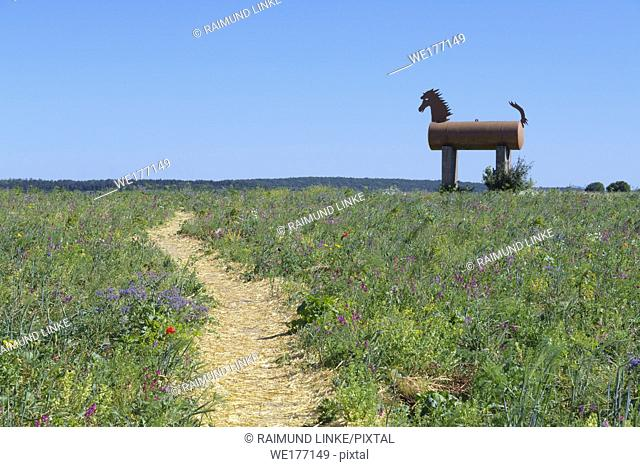 Path with Trojan horse in landscape, Grandenborn, Ringgau, Werra-Meissner district, Hesse, Germany