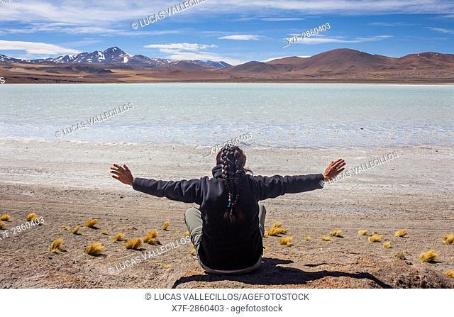 Atacameña Praying, in Salar (salt flats) or laguna (lagoon) de Tuyaito, also called Tuyajito, Altiplano, Puna, Atacama desert. Region de Antofagasta