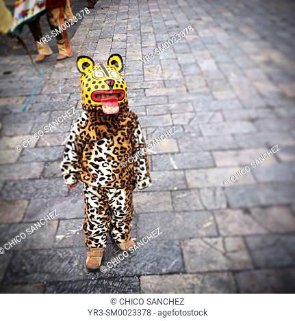A boy dressed as a jaguar dances during the annual pilgrimage to the Our Lady of Guadalupe basilica in Mexico City, Mexico