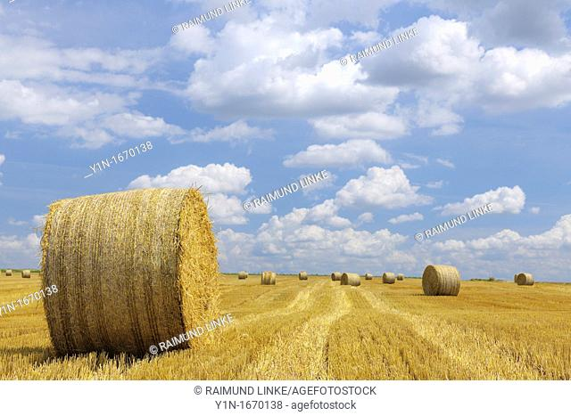Straw Bales in field, Germany, Rhineland-Palatinate