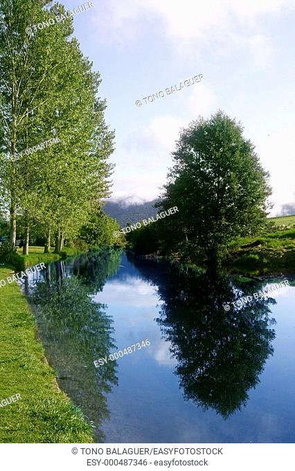 Blue river reflexion in a forest with soft blue sky