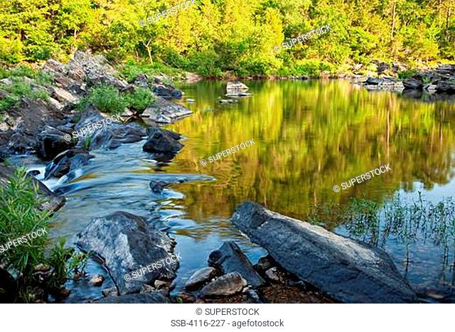 River flowing in a forest, Cossatot River, Ouachita Mountains, Ouachita National Forest, Arkansas, USA