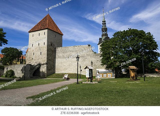 Maiden's Tower (Neitsitorn) and archery range, Tallinn's City Walls, Old Town, Tallinn, Estonia, Baltic States