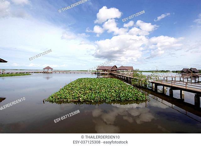 Thale Noi in Phatthalung Province, is one of the biggest lakes in Thailand. The name Thale Noi means small sea