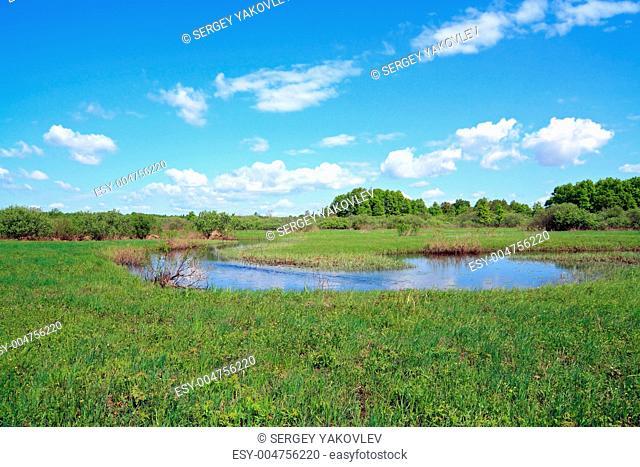 river on field