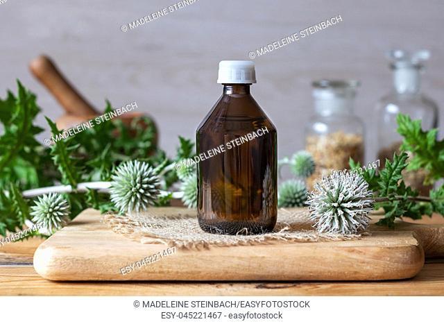 A bottle of glandular globe-thistle tincture with fresh blooming Echinops sphaerocephalus