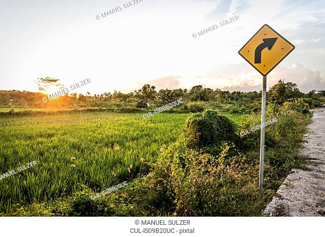 Yellow arrow sign and green field landscape at sunset, Lombok, Indonesia