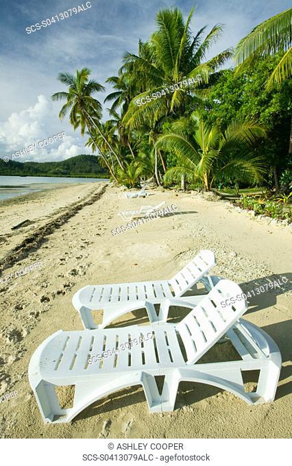 Coconut palms at the Walu Beach Resort on Malolo Island off Fiji