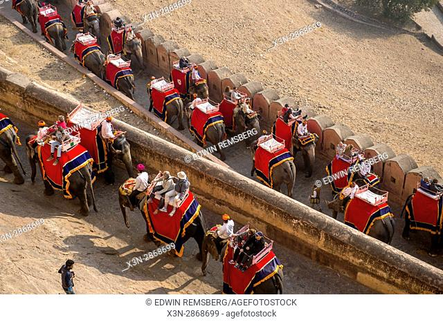 Tourists ride elephants to the Amer Fort in Jaipur, India