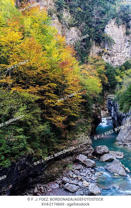 Narrow pass of Añisclo Canyon in Autumn, Ordesa and Monte Perdido National Park. Huesca Pyrenees, Aragón, Spain