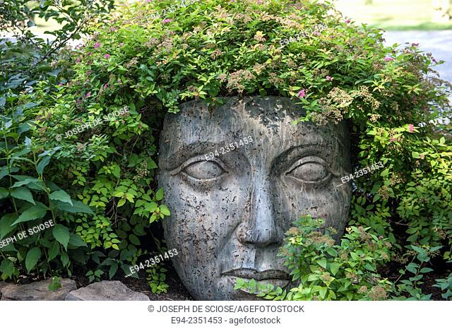 Garden statuary of a face with plants growing out of the top