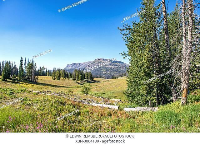 Dubois, Wyoming. USA
