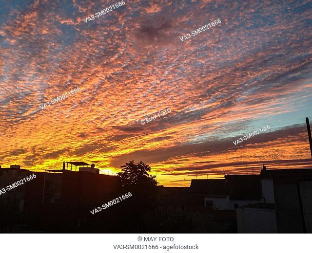 Massarrojos, Valencia, sunrise, Spain, Europe