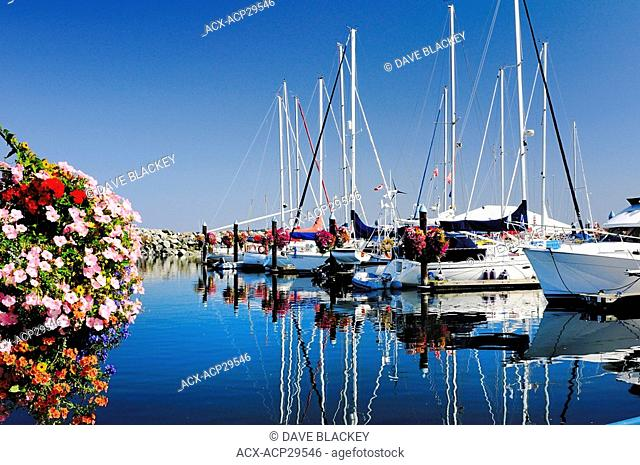 Flower baskets and yachts at the Port Sidney Marina in Sidney, British Columbia, Canada