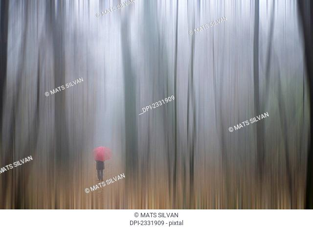 A woman walking with a red umbrella as viewed through a sheer curtain;Ronco sopra ascona ticino switzerland