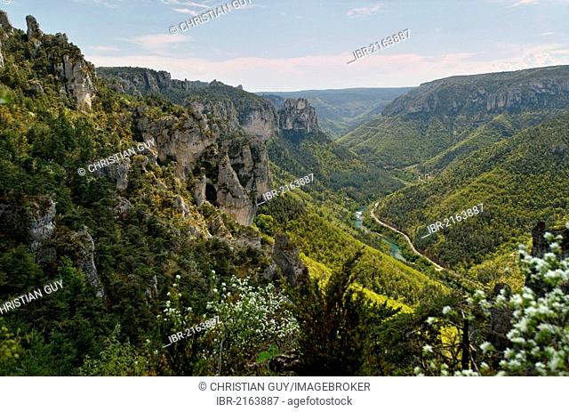 Lozere, Gorges du Tarn, the Causses and the Cevennes, Mediterranean agro pastoral cultural landscape, listed as World Heritage by UNESCO, France, Europe