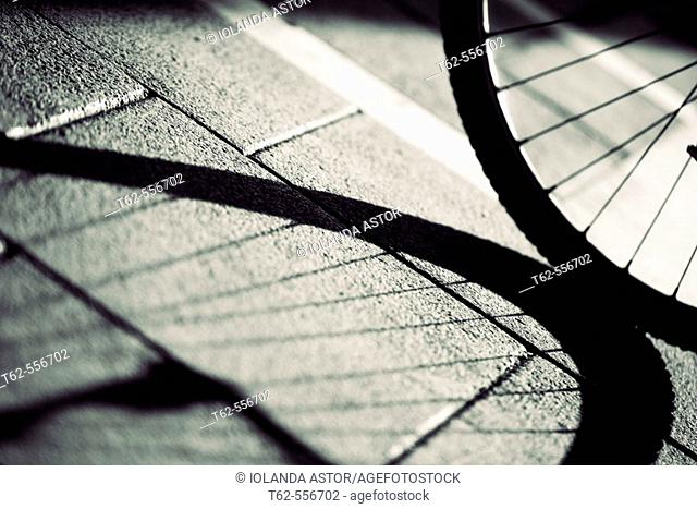 Bycicle wheel and shadow