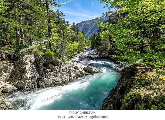 France, Hautes Pyrenees, Cauterets, stream betwen Cauterets and Pont d'Espagne, Parc National des Pyrenees (Pyrenees National Park)