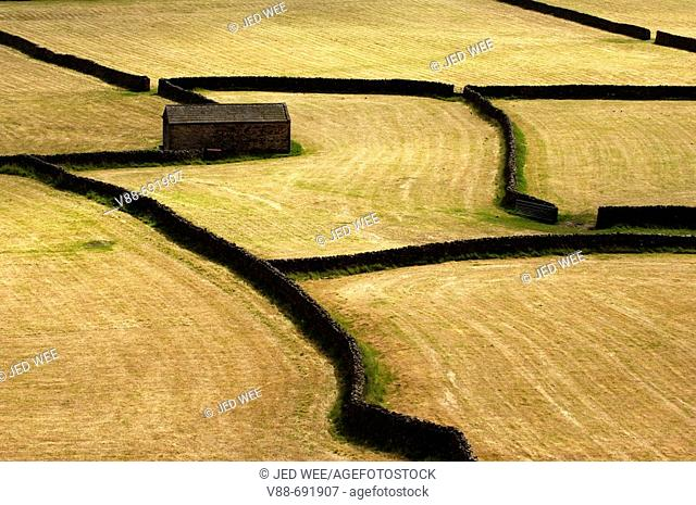 Farm fields and dry stone wall pattern just outside Gunnerside, Swaledale, in Yorkshire, England, UK