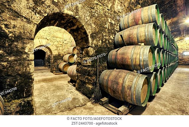 Barrel store at the Marqués de Riscal winery. The city of wine. Elciego. Rioja alavesa wine route. Alava. Basque country. Spain