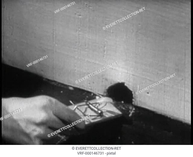 Close-up of hand leaving mousetrap near hole in wall