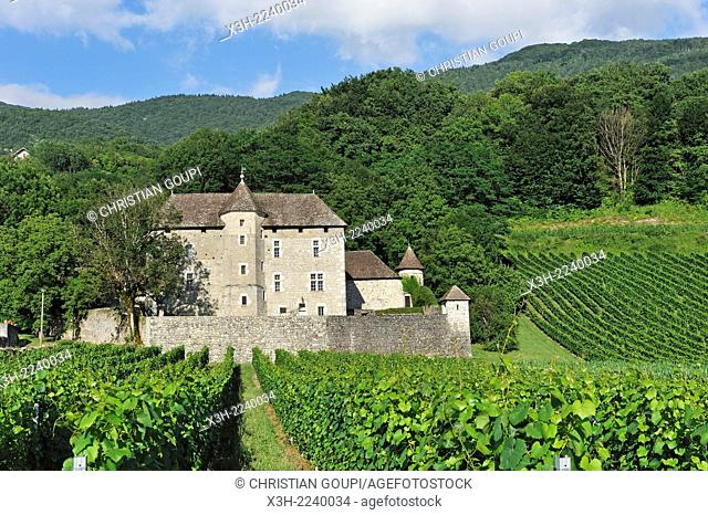 manor in vineyards near Ruffieux, Chautagne region, Lake Bourget area, Savoie, Rhone-Alpes region, France, Europe