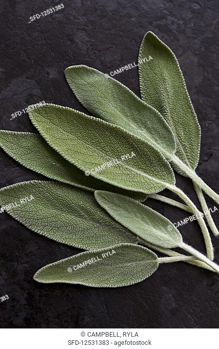 Individual sage leaves on a textured black countertop, photographed from above